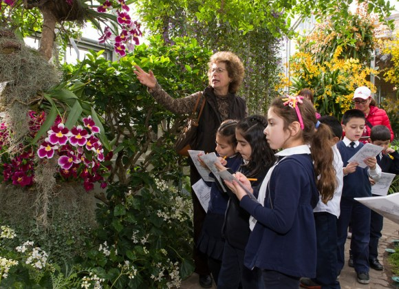PHOTO: Students observe how orchids are adapted to the wet environment -- they grow aerial roots that can absorb water from the humid air.