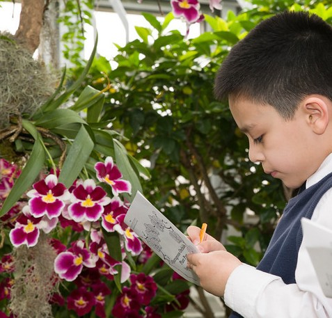 PHOTO: Boy taking notes on orchids in the Outrageous Orchids class.
