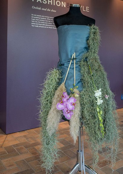 Under construction, this is one of 3 gowns made of orchids and other plants to be displayed at The Orchid Show this year.
