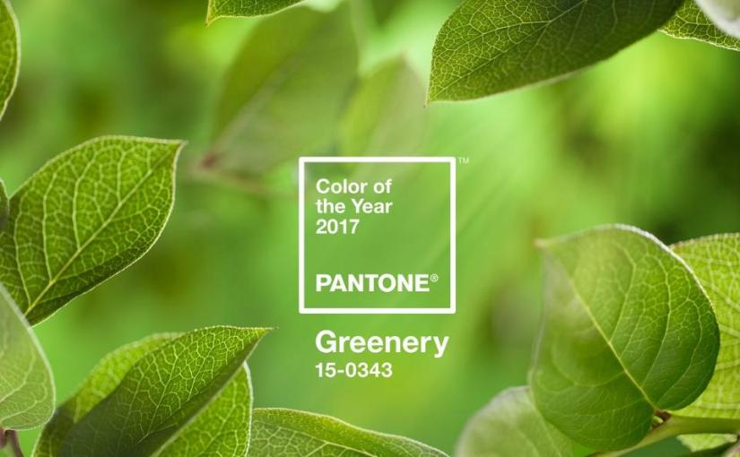 Pantone Color of the Year: 'Greenery' and Its Many Benefits