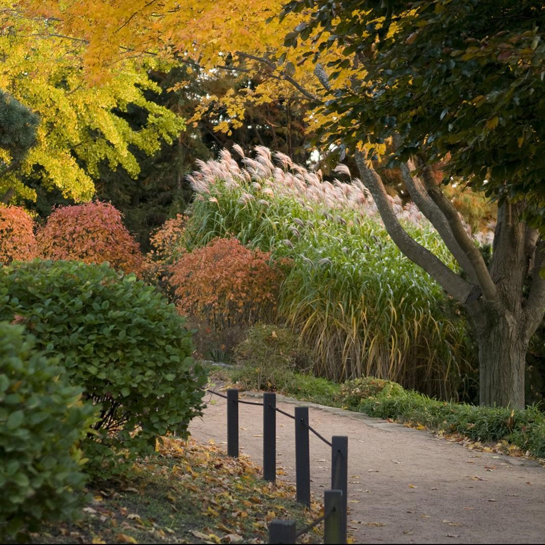Garden Tours | My Chicago Botanic Garden