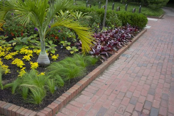 Repetition for effect: planting areas with a single plant create an effect of making an area seem larger.