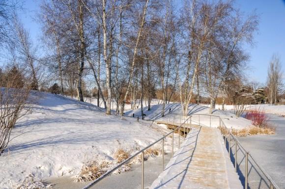PHOTO: Spider Island in winter.