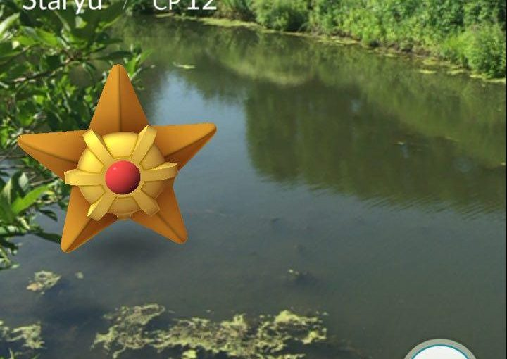 PHOTO: Staryu Pokémon in the Skokie Lagoons.