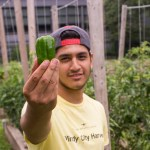 PHOTO: Windy City Harvest Youth Farm student with pepper.