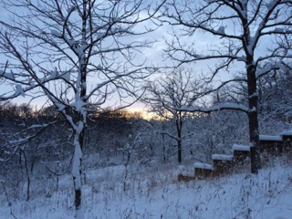 PHOTO: Winter in Kane County.