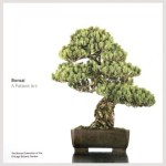 bonsai_book
