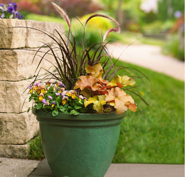 Fall Container Change Outs
