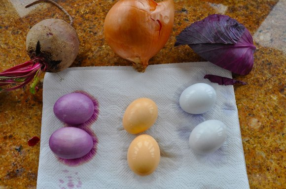 PHOTO: The vegetables we use, and their accomanying egg colors.