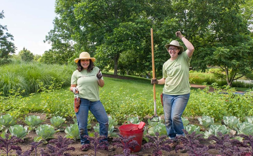 Interns Harvest More Than Veggies