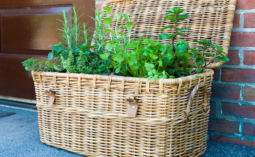 Fireworks for the Grill: Herb Brushes