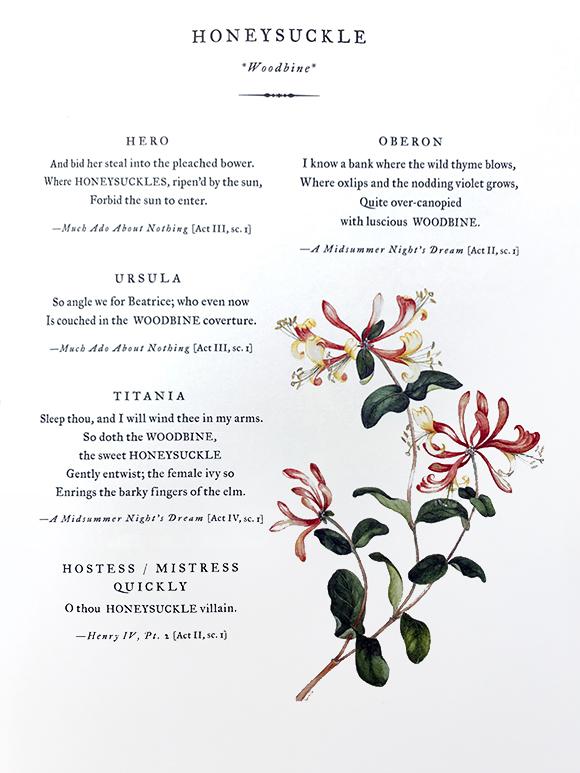 Next Restaurant  Introducao ao Menu