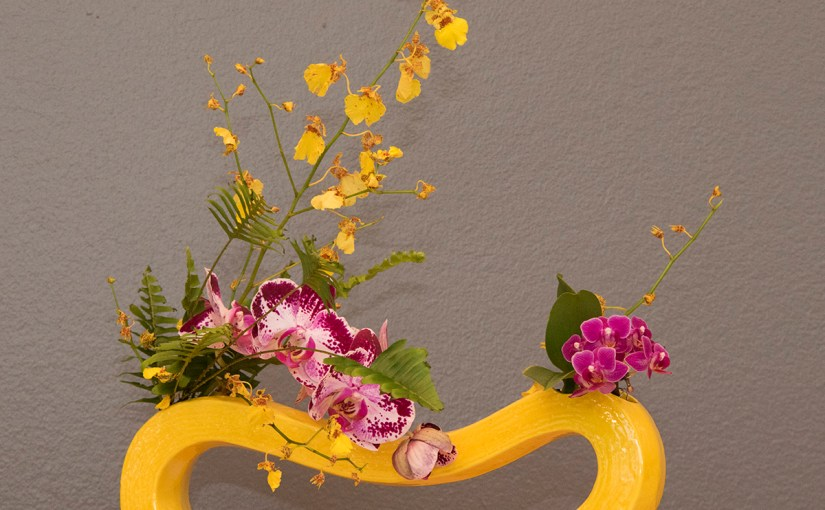Orchid ikebana display