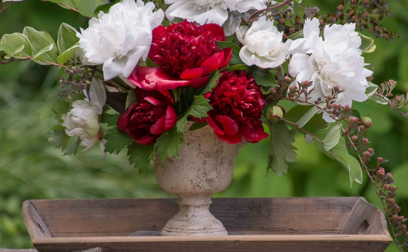 Make Peony Blooms Last Longer
