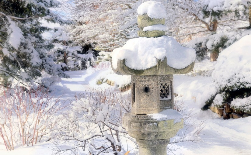 A Winter Walk Through the Japanese Garden