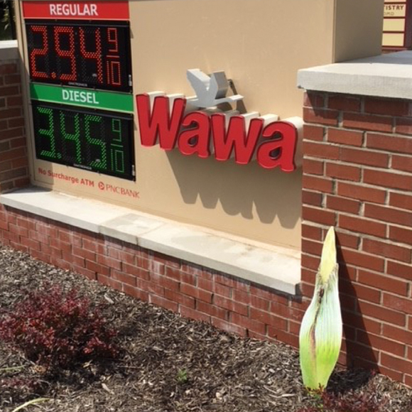 Titan Road Trip - Wawa Gas Station