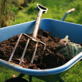 PHOTO: Wheelbarrow with mulch.