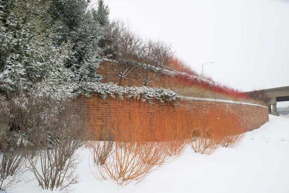 PHOTO: The Garden Wall in winter, looking south towards Dundee entrance ramp.