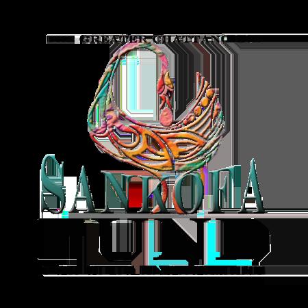 Sankofa Fund for Civic Engagement