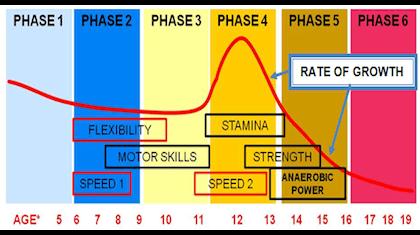 Image result for athlete development model