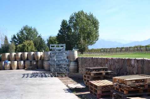 Winery Tour Mendoza Argentina