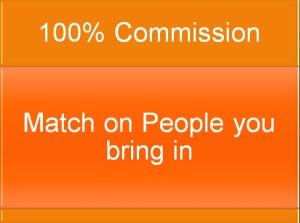 4c commisions orange