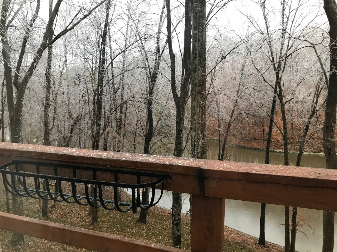 Ice Storm - Trees and Limbs falling all around us! 5