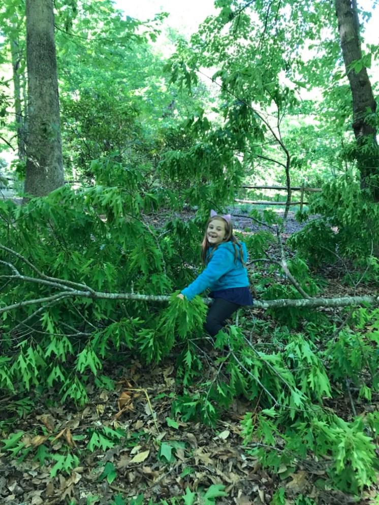 Child having fun on a fallen tree