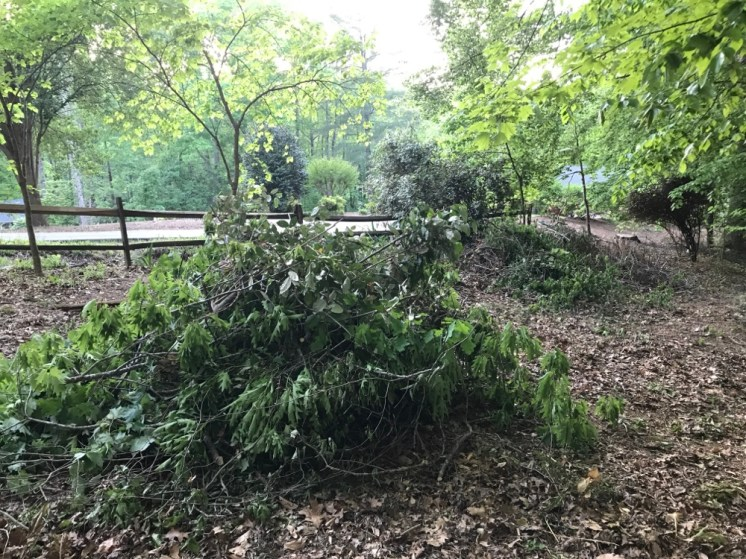 Pile of fallen debris from a storm