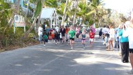 Hopetown Turtle Trot 2012_00130 - Copy