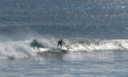 Garbanzos_Surf_11-24-13_08