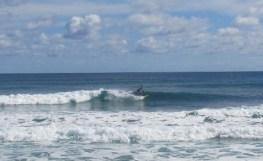 Garbanzos_Surf_11-24-13_19