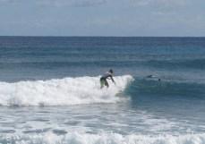 Garbanzos_Surf_11-24-13_20