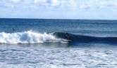 Garbanzos_Surf_11-24-13_35