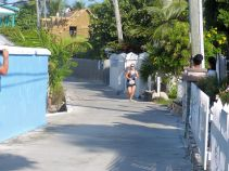 Turtle_Trot_Hopetown_Abaco_2015_20151126_0360