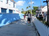 Turtle_Trot_Hopetown_Abaco_2015_20151126_0376