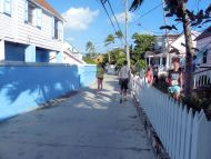 Turtle_Trot_Hopetown_Abaco_2015_20151126_0379