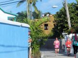 Turtle_Trot_Hopetown_Abaco_2015_20151126_0408