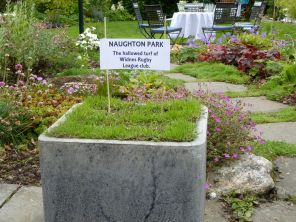 Naughton park - a piece of turf from Widnes rugby league club.