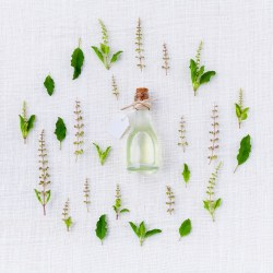 herbs for social anxiety, natural remedies for social anxiety