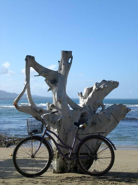 Puerto Viejo biking