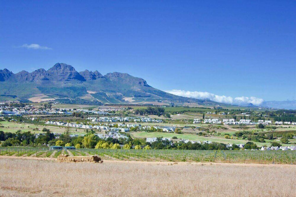 Seven Amazing Estates To Do Wine Tasting In Stellenbosch