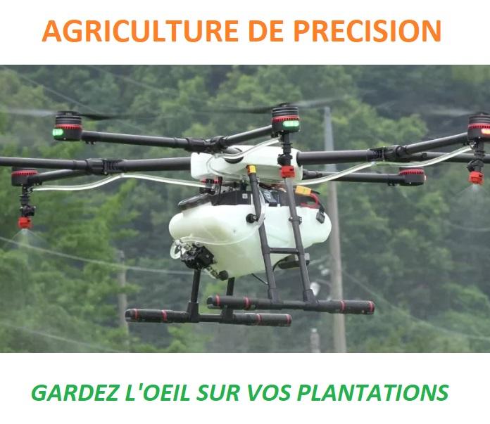 Une gestion intelligente des plantations par les drones