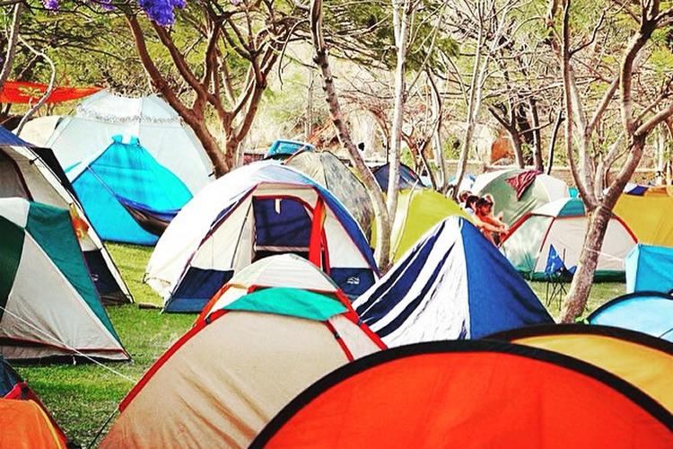 Lake of Stars Festival