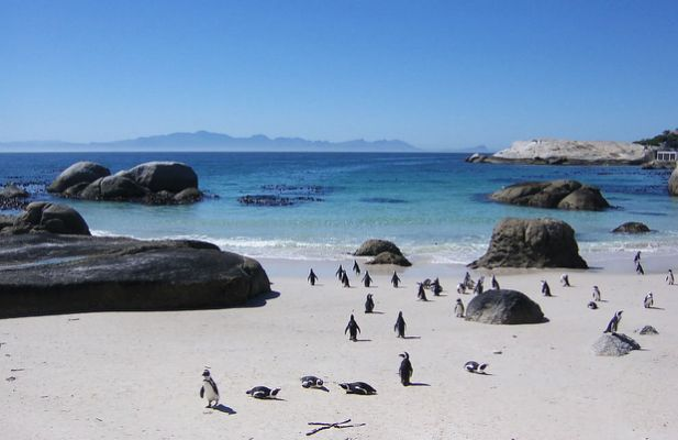 Beaches: Where are the best in Africa?