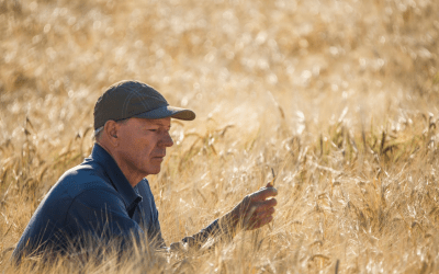 Why Your Ag Data Security is Important