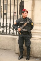 Guard outside the President's Palace.