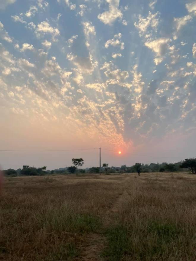 Sunset at raiyoli fossil park