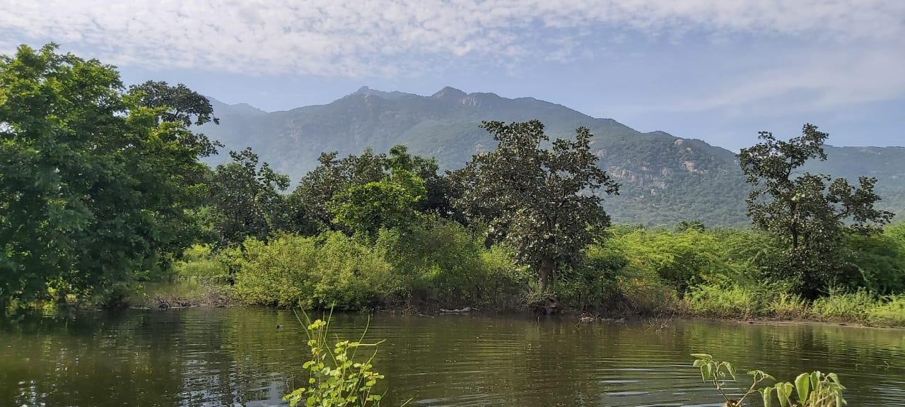 Jessore Mountain