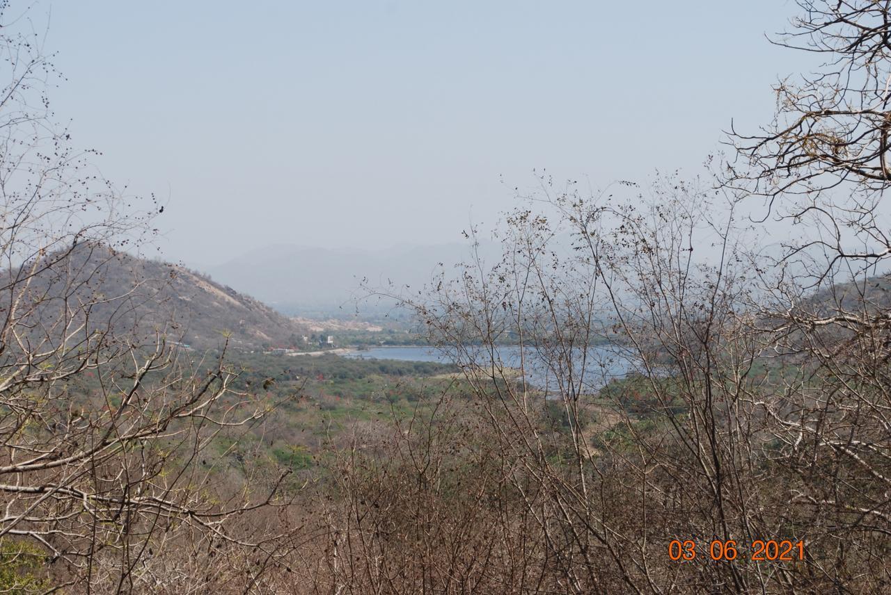 Lake at Jessore hills